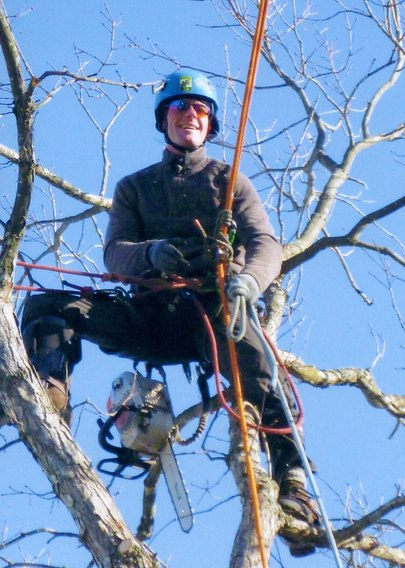 Pruning Rory in tree
